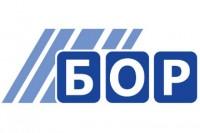 Radio Bor logo