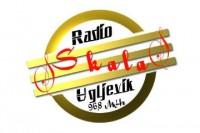Radio Skala logo