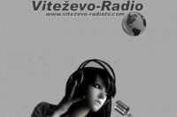 Viteževo Radio logo